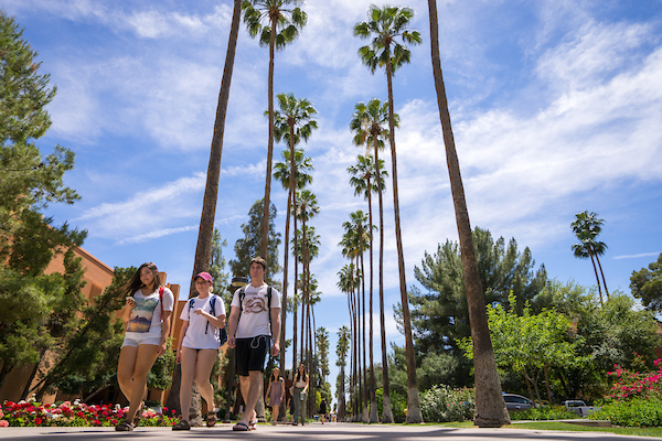 Students walk on palm walk